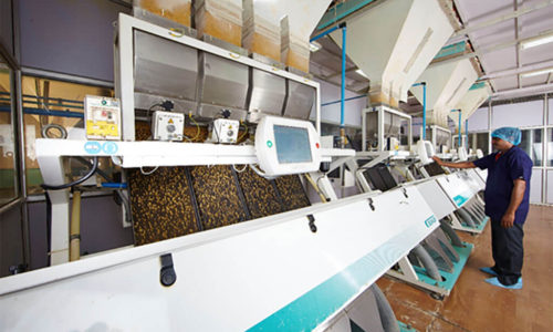 ETG Agro Processing 4